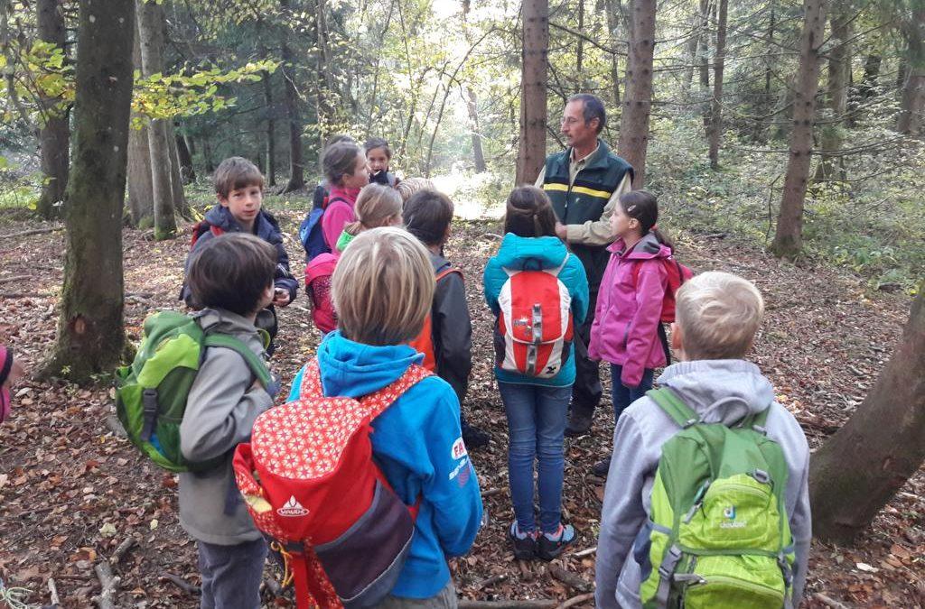 Unser Waldlerngang mit dem Förster Anton Schneider