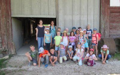Klasse 2 in Neuhausen ob Eck
