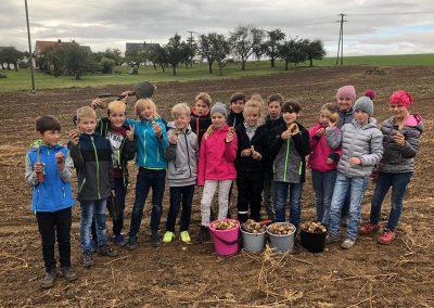 Grundschule_Dietingen_Rund um die Kartoffel (2)